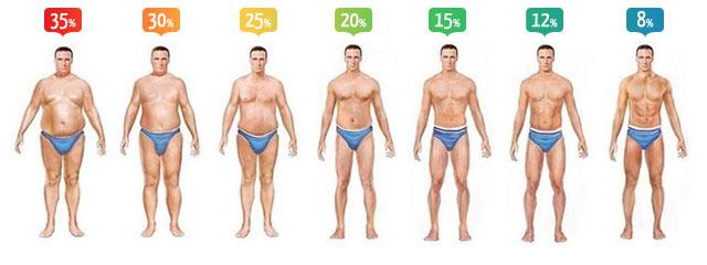كيفية معرفة نسبة الدهون في الجسم