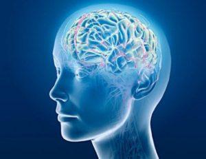 Кето положительно влияет на мозг